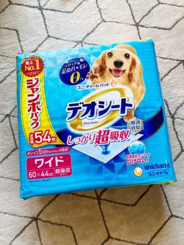 【ポメラニアン子犬】高品質なペットシーツを購入してみた
