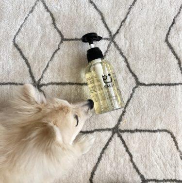 【無添加】ポメラニアン子犬に使うシャンプーの選び方